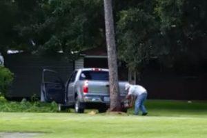 Tentar Derrubar Uma Árvore Com o Veículo Estacionado à Frente Nunca é Boa Ideia 10