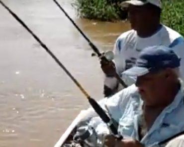 """Pescador """"Convence"""" Jacaré a Desistir De Roubar Pescaria 7"""
