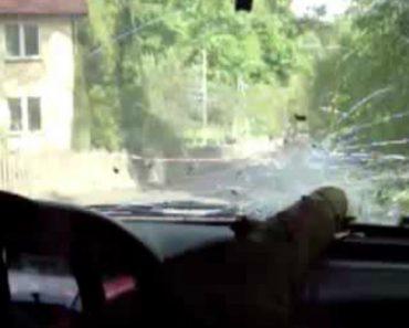 Piloto Despista-se Durante Prova De Rally e Quase é Atingido Por Tronco De Árvore Que Perfura Para-Brisas 1