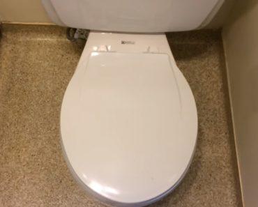 Este é Provavelmente o Sanitário Mais Completo De Todos 4