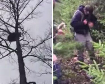 Assustado Urso Perseguido Por Caçador Consegue Afugentá-lo Ao Defecar Em Cima Dele 1