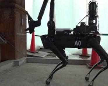 """Vídeo Da Boston Dynamics Mostra Utilidade Do Seu """"Cão"""" Robótico 3"""
