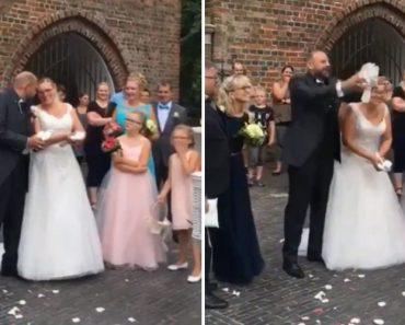 Libertação De Pombas Após Casamento Não Corre Como Esperado 5