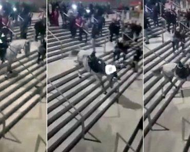"""Cavalo """"Atira"""" Polícia Ao Chão Enquanto Se Esforça Por Descer Escadaria 6"""