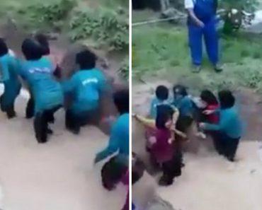 """Funcionários De Escola Fazem Treino """"Espírito De Equipa"""" Em Crianças Usando Água e Cobras 1"""