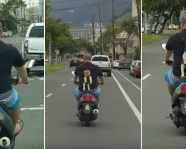 Homem Encontra Método Alternativo Para Transportar o Seu Cachorrinho Enquanto Conduz Uma Scooter 3
