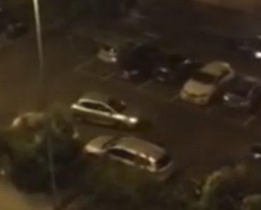Idiotas Disparam Fogo-De-Artificio Da Janela De Carro Contra Edifício e Carros 2