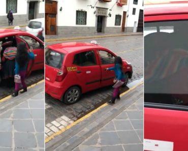 Lama Apanha Táxi Em Mais Um Dia Normal No Peru 5