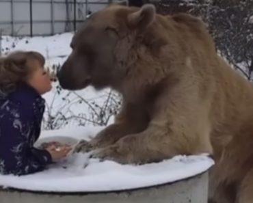 Mulher e Urso Tomam o Pequeno Almoço Juntos Todos Os Dias 7