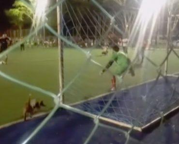"""Cão """"Guarda-Redes"""" Invade Campo e Defende Penálti 3"""