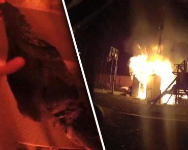 Agente Da Polícia Salva Galinha De Incêndio e Acaba Troçado Por Colegas 7