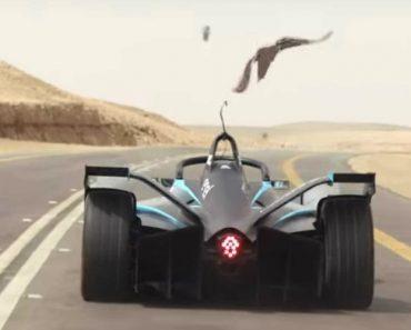"""Numa """"Drag Race"""" Entre Felipe Massa e Um Falcão, Quem Sairá Vencedor? 7"""