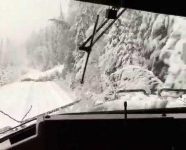 Maquinista Filma a Sua Viagem Ao Passar Por Árvores Caídas Após Tempestade De Neve 6