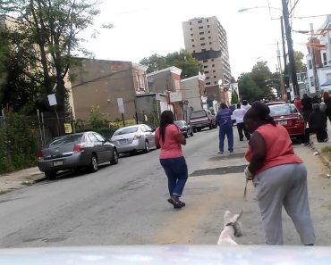 Mulher Queria Muito Ver a Demolição Do Edifício, Mas o Seu Cão Trocou-lhe As Voltas 15
