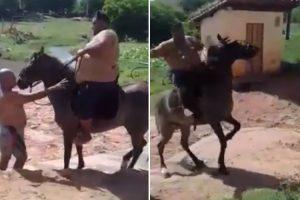 Homem Extremamente Pesado Achou Que Seria Boa Ideia Montar Cavalo 9