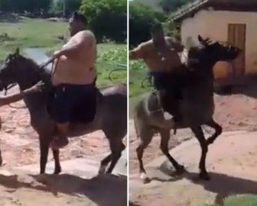 Homem Extremamente Pesado Achou Que Seria Boa Ideia Montar Cavalo 7