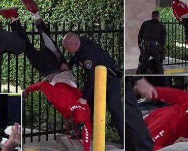 Suspeito Fica Com As Calças Presas Em Vedação No Momento Em Que Tenta Entregar-se à Polícia 5