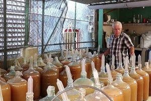 Empresa Produtora De Vinho Usa Preservativos Para o Processo De Fermentação 10