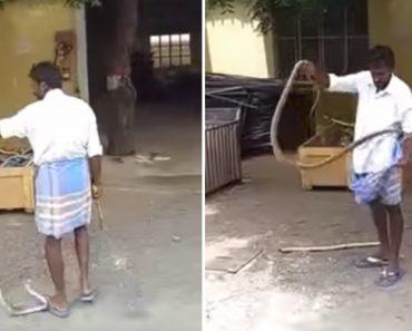Como Se Apanha Uma Cobra Ao Estilo Indiano 3