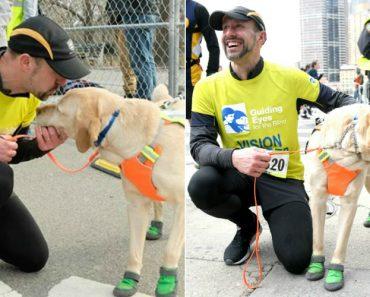 Corredor Cego Termina a Meia Maratona De Nova Iorque Com Ajuda Dos Seus Cães 5
