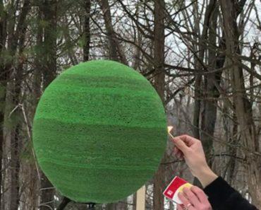 Passou 1 Ano a Colar 42.000 Fósforos, Para Fazer Uma Esfera. Agora Acendeu-a… 1