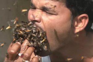 Aposta Leva Homem a Colocar Centenas De Abelhas Na Boca 8
