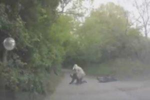Após Acidente, Condutora Deixa Fugir o Carro Para Tentar Ajudar Motociclista 9