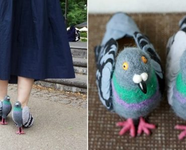Designer Japonesa Cria Sapatos Que Imitam Pombos 2
