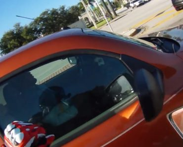 Condutor Adormece Profundamente Enquanto Espera No Semáforo 1