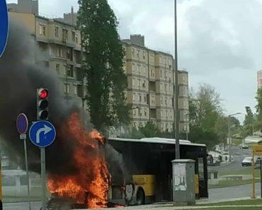 Autocarro Da Carris Incendeia-se Em Chelas 6