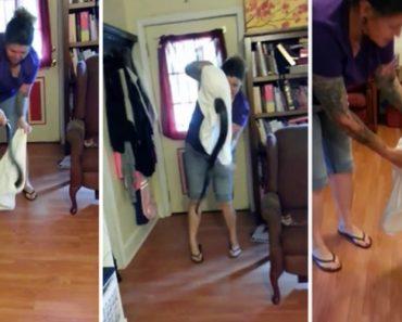 Mulher Encontra Cobra Na Sala e Tenta Apanhá-la Com Uma Fronha 2
