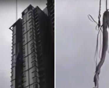 Bombeiros Usam Grua Para Retirar Gigantesca Cobra Do Topo De Edifício 6