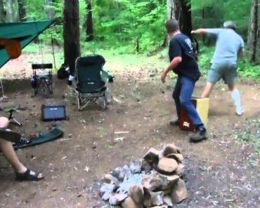 Guitarrista Atacado e Mordido Por Morcego Enquanto Tocava Em Floresta 8