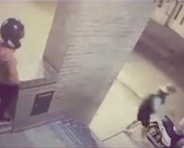 Menina De 11 Anos Esmurra e Afugenta Homem Que Tentava Assaltar a Sua Mãe 2