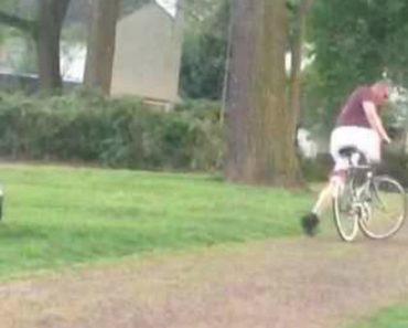 Homem Não Percebe Que Está Demasiado Bêbado Para Andar De Bicicleta 8