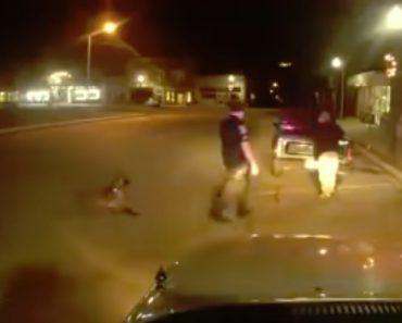 Suspeito Comete o Erro De Tentar Atacar Agente Na Presença De Cão Policia 7