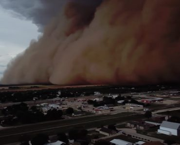 Filmagem Aérea Capta Massiva Tempestade De Areia 6
