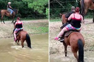 Cavalo Vinga-se De Humanos Que o Obrigaram a Atravessar o Rio 9