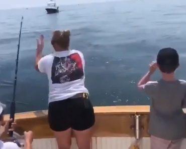 Surpresa Na Pescaria. Tubarão Branco Surgiu Do Nada e Roubou Peixe 6